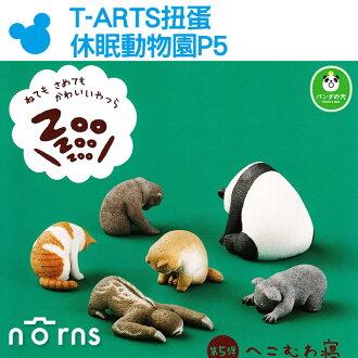 NORNS【T-ARTS扭蛋 休眠動物園P5】Zoo熊貓之穴 玩具 擺飾 療癒小物 日本轉蛋 睡覺 公仔狗無尾熊貓咪