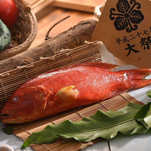 紅條石斑魚 (550g/尾) 【大宇水產 】純淨無染海域頂級野生七星斑、宴會餐桌上不可或缺的主角