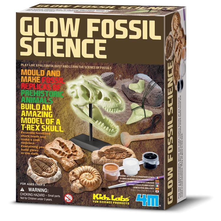 【4M】挖掘考古系列-恐龍化石科學 Glow Fossil Science 00-03356