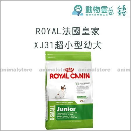 ROYAL法國皇家~XJ31超小型幼犬1.5kg