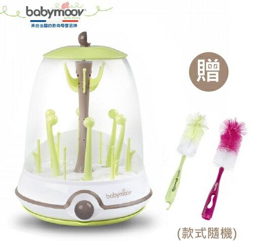 【隨機送2合一奶瓶奶嘴刷一組】法國【Babymoov】電動蒸氣消毒鍋