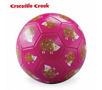 美國CrocodileCreek3號兒童運動遊戲足球-花花刺蝟★衛立兒生活館★