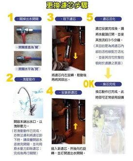 台灣EVERPURE S100/S-100濾心,代理商貨(最新到貨~附贈計時器) 2990元