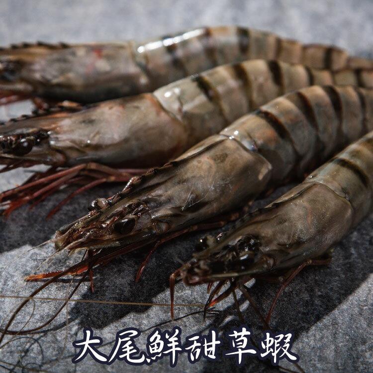 【賣漁人家】大尾鮮甜草蝦(XL) 0