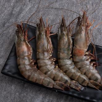 【賣漁人家】大尾鮮甜草蝦(含冰重400g±10%)