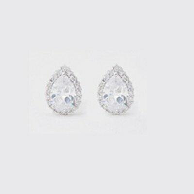 925純銀耳環鑲鑽耳飾~簡約 高貴迷人情人節生日 女飾品4色73hz54~ ~~米蘭 ~