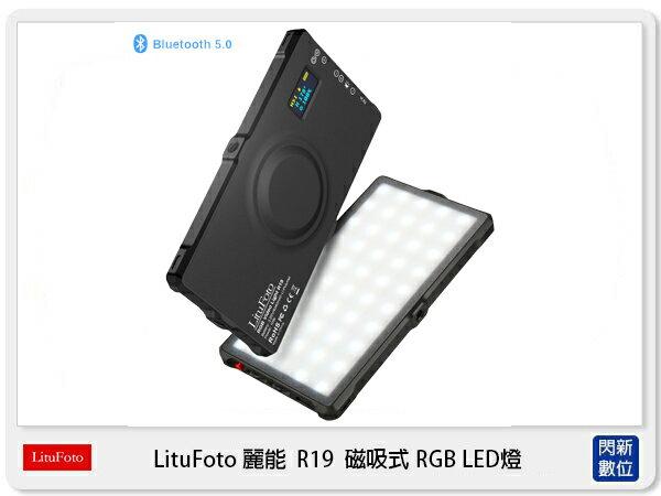 【銀行刷卡金+樂天點數回饋】LituFoto 麗能 R19 磁吸式 RGB LED燈 支援App控制 (公司貨)