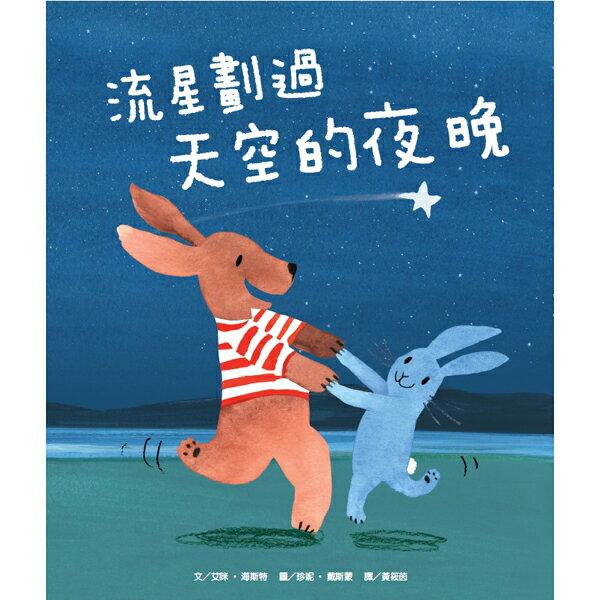 維京 i Book:【維京國際】流星劃過天空的夜晚