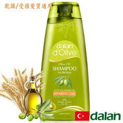 Dalan~橄欖油修護洗髮露400ml/瓶(乾燥/受損髮質) ~特惠中~