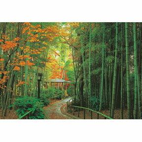 【P2 拼圖】日本竹林道 紅葉之修善寺 拼圖1000片 HM100-232