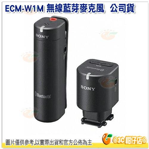 現貨/免運/可分期 SONY ECM-W1M 台灣索尼公司貨 藍芽麥克風 適用 PJ820 HX400 RX100M3 收音距離遠至100公尺 立體聲 ECM-HW2新款