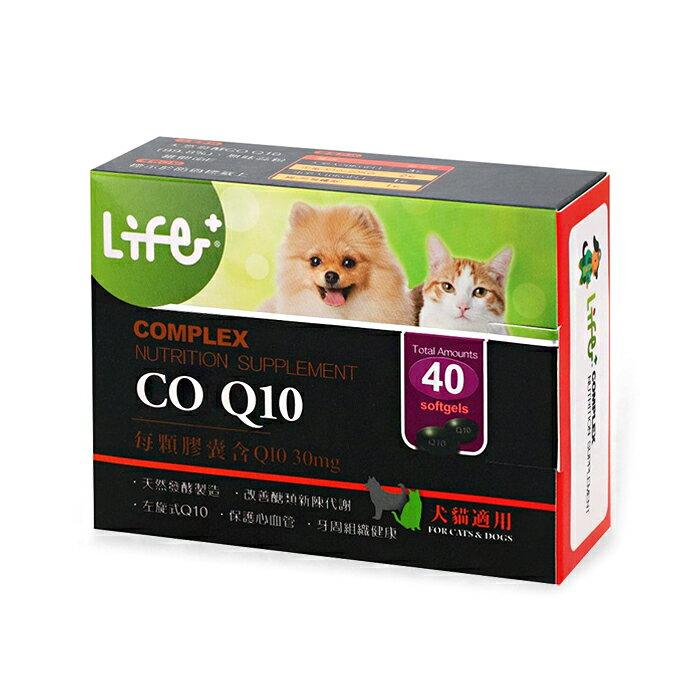 虎揚LIFE+ 左旋輔酵素 CO-Q10【40粒】
