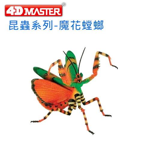 【4D 立體拼組模型】昆蟲系列-魔花螳螂 FLOWER MANTIS