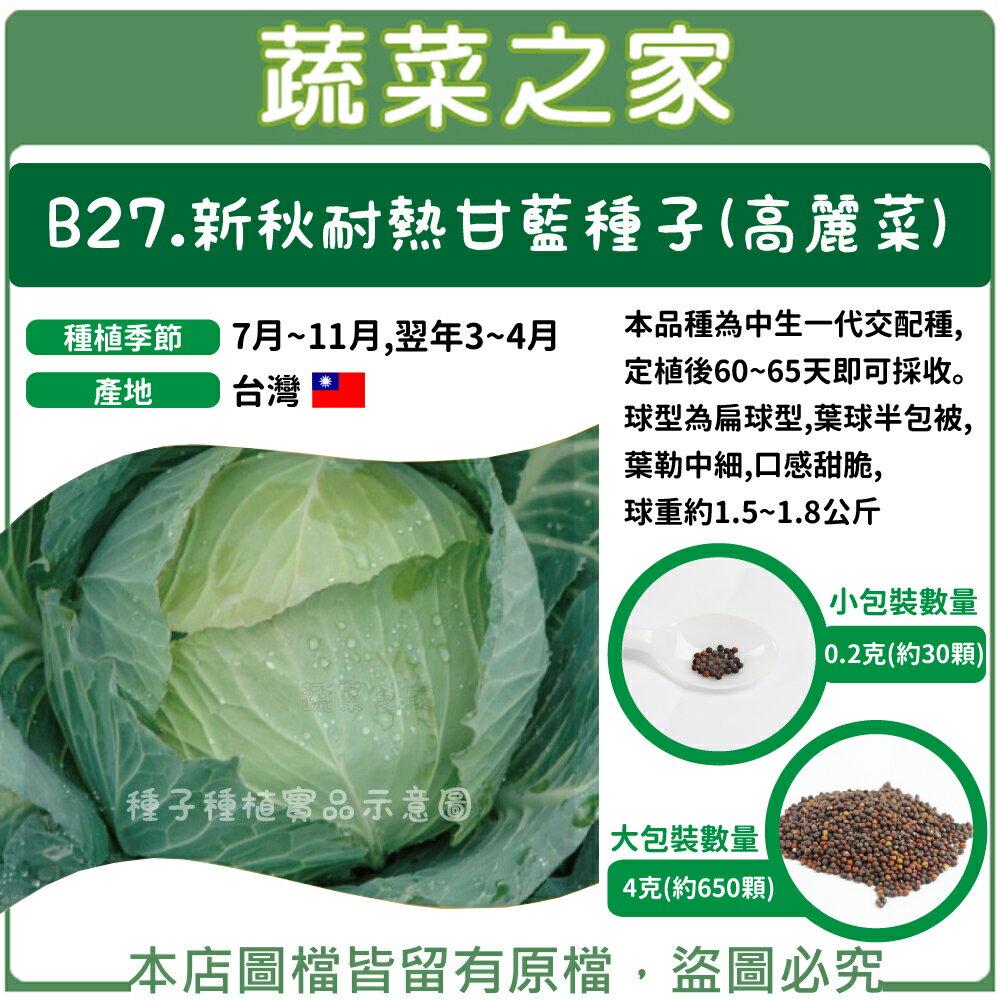 【蔬菜之家】B27.新秋耐熱甘藍種子(高麗菜)(共有2種包裝可選)