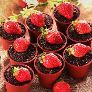 ★木匠手作★草莓盆栽提拉米蘇(一盒10入) 1