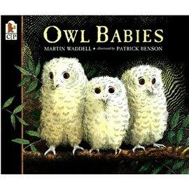 ~MacKids~OWL BABIES