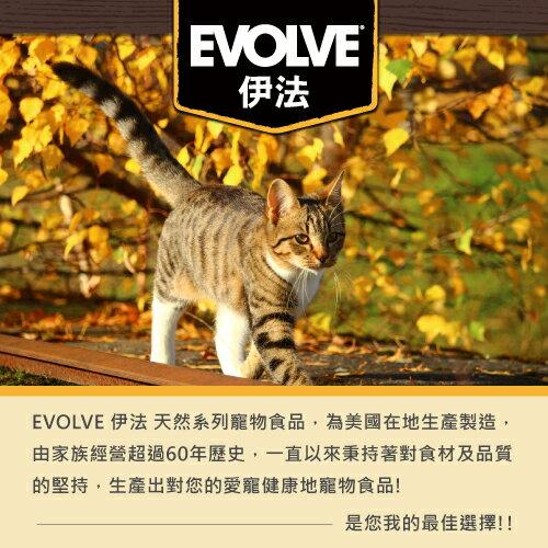 Evolve 伊法  天然無穀貓糧-去骨雞肉&鷹嘴豆配方 3LB 可超取  (A002H03) 2