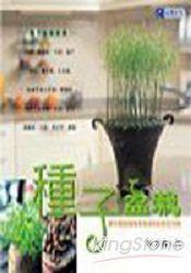 種子盆栽DIY