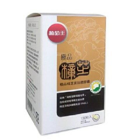 葡萄王 極品樟芝菌絲體膠囊 120粒 (和德藥局) 保證公司正貨