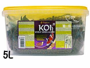 [第一佳水族寵物]波蘭德比克Tropical錦鯉免疫蒜精顆粒飼料[5L]免運(中大型錦鯉、金魚)