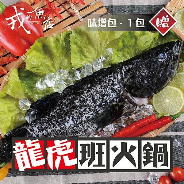 【龍虎斑火鍋 - 火鍋暖人包】冬季暖~暖推出!戎的魚店