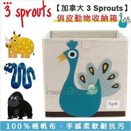 +蟲寶寶+【加拿大 3 Sprouts】NEW超大容量好收納! 俏皮動物收納箱4 款可選!《現+預》
