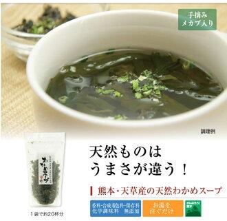 日本製熊本縣海帶高湯味增湯乾燥野菜311261海渡