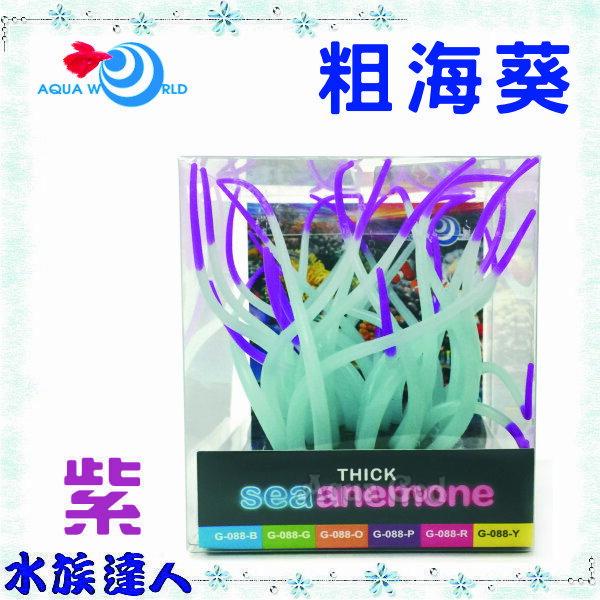 ~水族 ~~造景裝飾~水世界AQUA WORLD~sea anemone 粗海葵 螢光紫