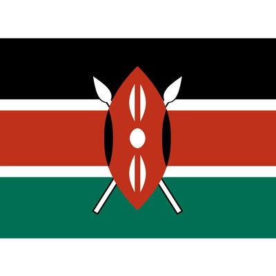精選肯亞AA咖啡生豆《500克》