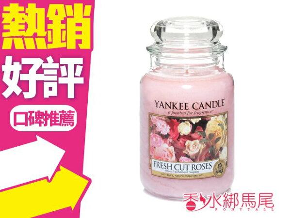 YANKEECANDLE香氛蠟燭FRESHCUTROSES新鮮的玫瑰623g(大)◐香水綁馬尾◐