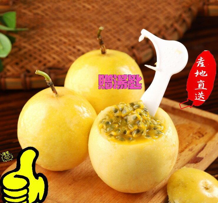 【免運費】南投埔里金玉蘋果百香果 小孩的最愛  一定要吃過才知道   難以種植照顧數量有限