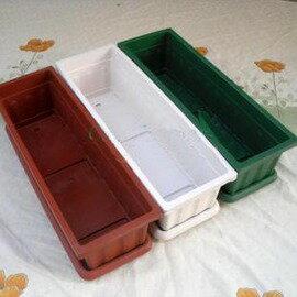 【AU610長條盆+托盤】長方形花盆 花槽 種菜盆 60*19.5*16cm-5101002