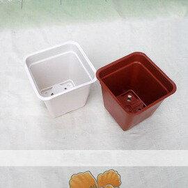 【LB170小方盆-5個】迷你小花盆 育苗盆 方形盆  口徑13.5*高12cm-5101002