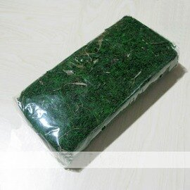 【特級青苔-120g】無土栽培基質 幹苔蘚 表層裝飾 120g/包-5101002