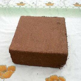 【超大椰磚】泡開約60升 有機蔬菜培養土 泥炭植料 花土-5101002
