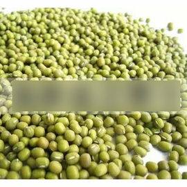 【芽苗種子-綠豆芽-300g-包】小綠豆種子 芽菜專用 發芽率高 有機菜,約300g/包,3包/組-5101003