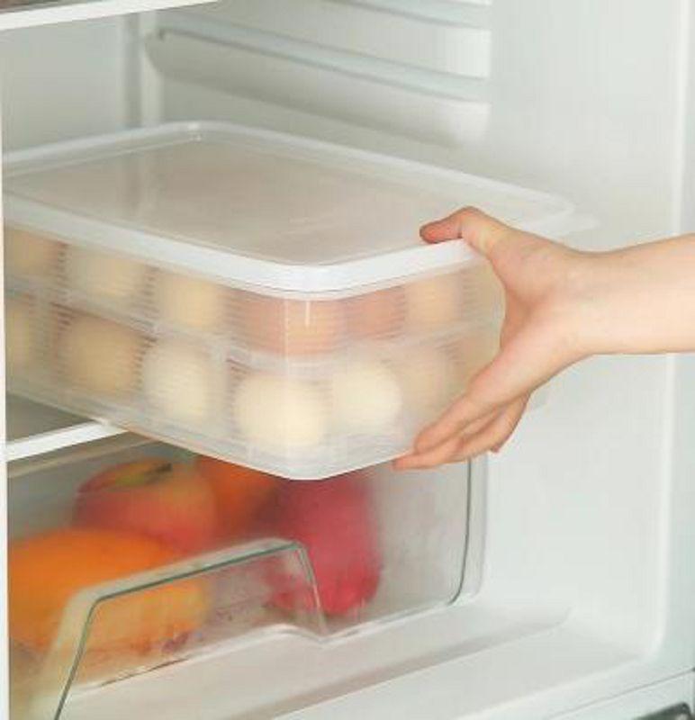 【雞蛋收納盒-16格-雙層-PP-1個/組】大容量蛋盒 24格雞蛋收納盒塑膠保鮮盒冰箱帶蓋儲物-726004