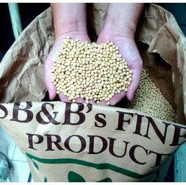 【頂級高蛋白黃豆A+級-1公斤/包-3包/組】頂級高蛋白黃豆A+級 1公斤-8020003