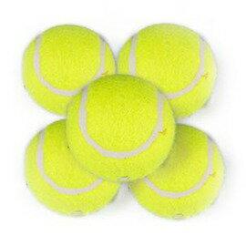 網球 帶繩 訓練網球 氣足 彈性好 單人比賽訓練用球 ~7801001