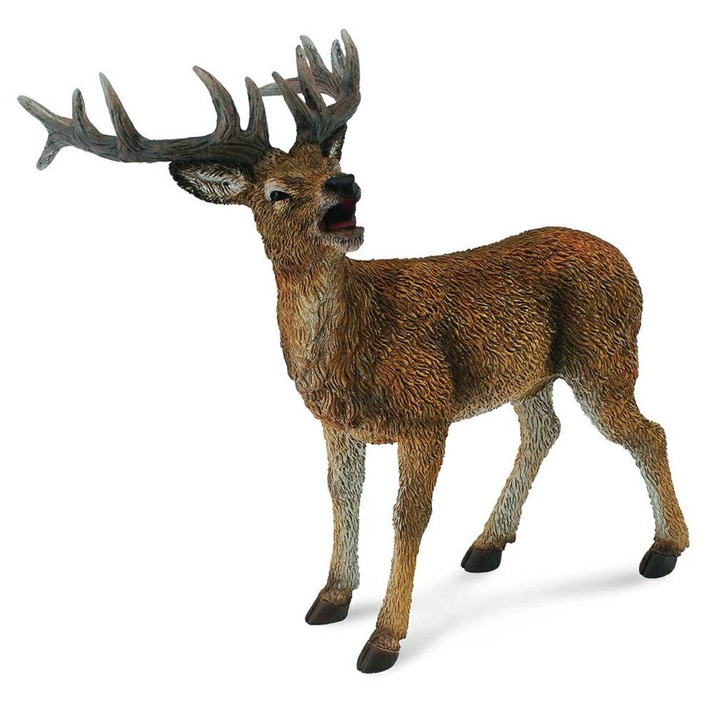 【 COLLECTA 】公鹿