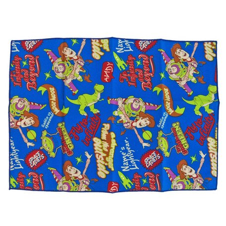 大賀屋 玩具總動員 午餐墊 野餐墊 地墊 桌巾 3525cm迪士尼 皮克斯 日本製 正版 授權 J00012987