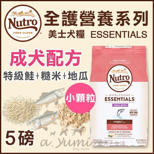 《Nutro美士》全護營養系列-成犬配方(特級鮭魚+糙米地瓜)-小顆粒5LB / 狗飼料