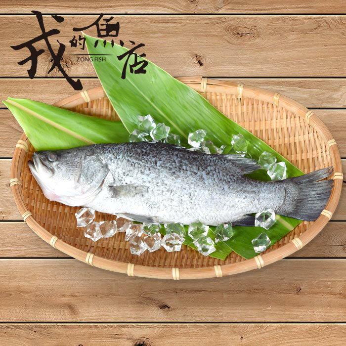 【鱸魚整尾/2尾】台灣優質金目鱸魚,肉質細嫩鮮甜,富含油脂*戎的魚店*