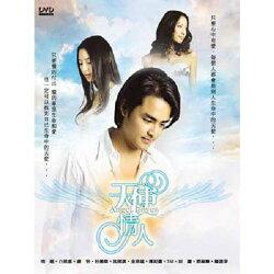 【超取299免運】天使情人DVD (全40集/6片) 明道/白歆惠/蔣怡