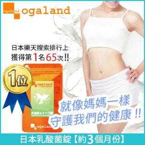 歐格蘭德日本保健食品:乳酸菌錠【共3個月份】日本進口保健食品寡糖