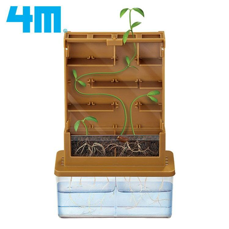 耀您館★4M綠色科學Green Science植物迷宮Grow-A-Mate認識植物生長00-03352《15年德國紅點獎