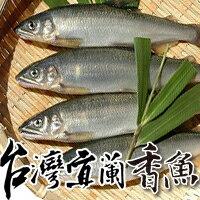 【台北濱江】宜蘭鮮嫩公香魚(10尾/盒)