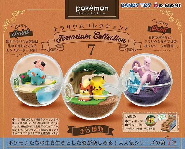 【寶可夢飼育球7】寶可夢 第七代 飼育球 盒玩 日本正版 該該貝比日本精品
