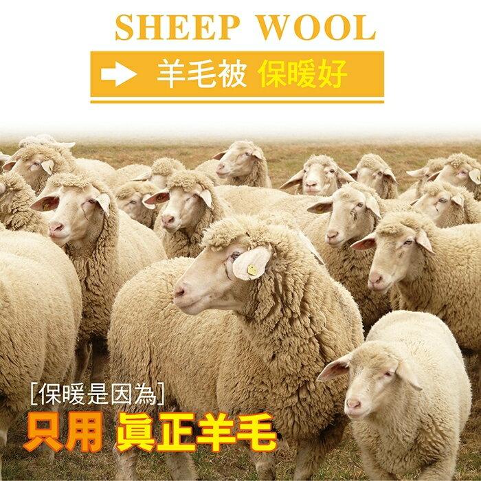 【皮斯佐丹】100%純新特級雙人羊毛被_TRP多利寶