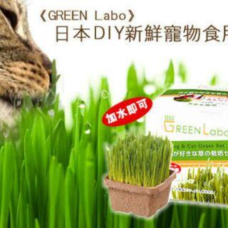 PAWPAL寵物樂活:☆Pawpal寵物樂活☆【日本GreenLabo】DIY新鮮貓草-犬貓適用無農藥栽培
